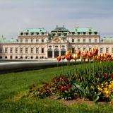 castle_belvedere