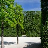 castle_schoenbrunn_garden
