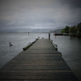 jetty-nz