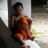 young-monk-study