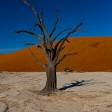 Namibia-16