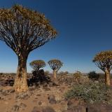 Namibia-5