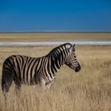 Namibia-68